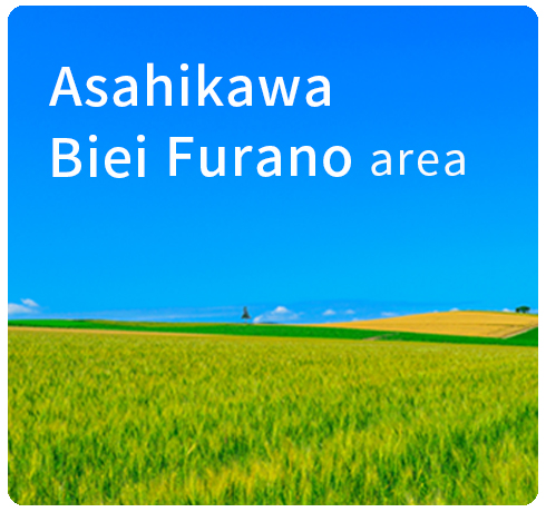 activity booking website in asahikawa biei and furano area