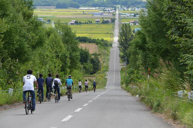lavender cycling