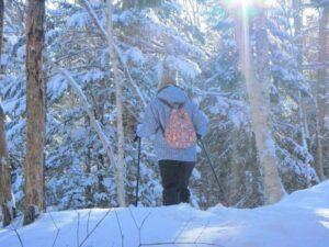 Snowshoeing in Shiretoko