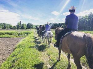 北海道といえば乗馬