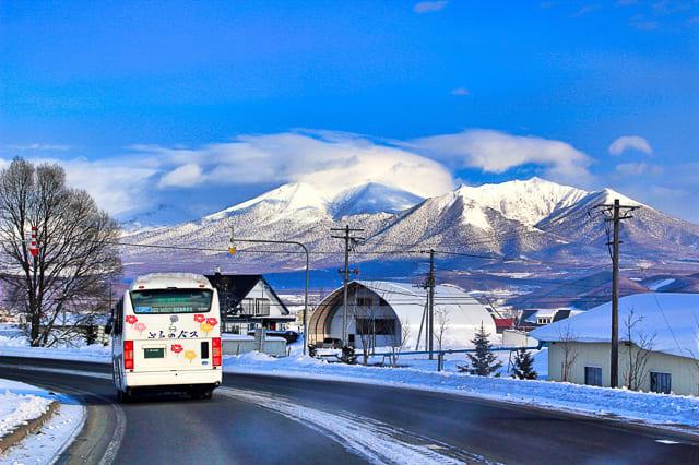 富良野 バス