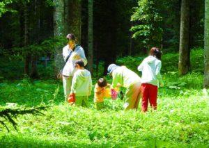 富良野自然体験