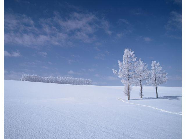 冬 北海道