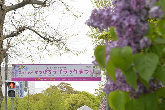 札幌 ライラックまつり