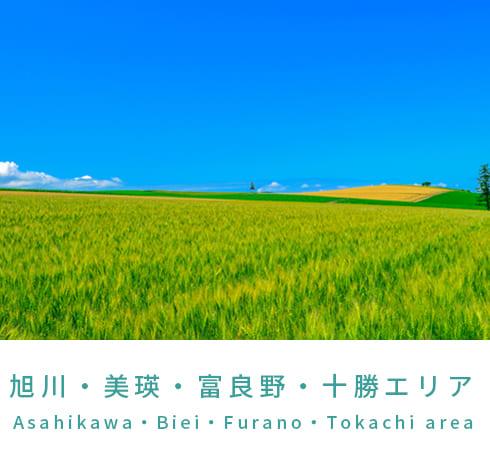 旭川・美瑛・富良野・十勝エリアの観光アクティビティ