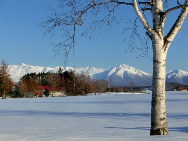 富良野 冬